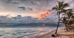 A dawn with a storm... (The Sergeant AGS (A city guy)) Tags: puntacana seashore skies coconuttree colors bavarobeach rdominicana storm beachscape beach exploration travelling tourism dawn sea
