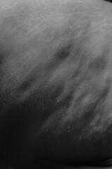 Perfection 3/9 (Loida CriadoMore) Tags: loidacriadomore autorretrato desnudo desnudoartistico blanco negro blancoynegro bn critica sociedad perfeccin imperfeccin marcas estras granos espinillas heridas amor propio fragmentacin primerplano proyecto self portrair selfportrait naked artistic nude white black blackandwhite bw review society perfectos imperfectos brands estrecha mares gratin simples rounds love selflove fragmentation foreground draft project