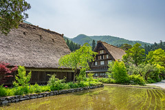 The Village (Pikaglace) Tags: sony a7 shirakawago japan japon alps asie asia mountains village traditional architecture japanese japonaise chaume rizire rice field water reflexion trees