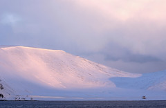 Who Lives in a House Like This (Gay Biddlecombe) Tags: norway snow landscape pink blue arctic sea coast