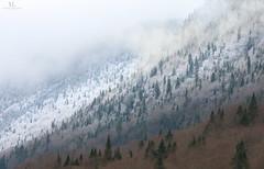 Montagne enneigée (Maxime Legare-Vezina) Tags: landscape paysage canon winter moutain coulds fog forest hiver snow neige sepaq parcsquébec parcnationaldelajacquescartier