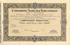 CONSORZIO AGRICOLO INDUSTRIALE (scripofilia) Tags: 1928 agricolo azioni catanzaro consorzio industriale