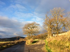 The road past the farm (goforchris) Tags: winter ardyne lowsun sky cowal argyll scotland