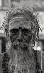 Sadhu (Rajavelu1) Tags: sadhu devoties siva hindu temple pazamuthirsolai madurai india art artland creative