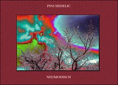 Deconstruction:  Psychedelic, neumodisch (Walter A. Aue) Tags: verbopictorial decolored deconstruction hoarfrost ice tree walteraaue puzzling