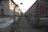 Auschwitz ... (Alex Verweij) Tags: neveragain nooitmeer auschwitz concentratiekamp polen annefrank diary distroy 1944 vernietigingskampen naziduitsland emotie tweedewereldoorlog oorlog oświęcim joden europa prikkeldraad martelen marteling respekt wachtoren vergast explore
