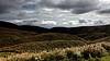 DSCN0631 National Park Grass Mountain (tsuping.liu) Tags: outdoor organicpatttern landscape lighting cloud colorofsky sky light bright grass nature natureselegantshots naturesfinest plant photoborder perspective pattern photographt photoboder
