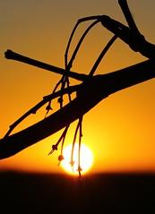 Minster sunset (Graham  Sodhachin) Tags: sunset minster winter