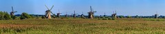 Kinderdijk (ulrichcziollek) Tags: