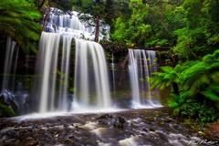 Russel Falls, Tasmania (Paulmp81) Tags: ifttt 500px tasmania waterfall australia water river long exposure rocks green trees travel