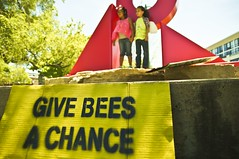Give Bees a Chance (Light Brigading) Tags: sign square bees banner joe bee milwaukee gmo monsanto catalano brusky geneticallymodifiedorganism marchagainstmonsanto
