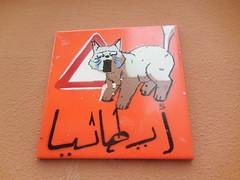 DSCN7558 (en-ri) Tags: muro wall writing cat torino graffiti italia cartello gatto arancione divieto piastrella daccesso