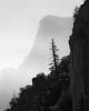 Foggy in the Yosemite Valley (Ehren Mannebach) Tags: blackandwhite bw fog landscape yosemite serenity yosemitenationalpark resilience the4elements yosemitebw yosemiteblackandwhite yosemitetree nikond7100 nikon70200mmf4 foggyyosemite yosemitejune2014 yosemitecliff mistyyosemite moodyyosemite
