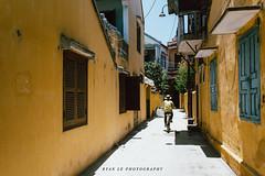 Hoi An, Vietnam (Ryan Le Photography (Vietnam)) Tags: lighting light green film canon photography eos daylight ryan sunday vietnam hoian le vista dslr 6d 1nhs canon6d vsco ryanle ryanlephotography