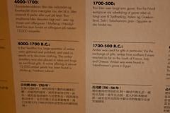 Amber info XV (blueviking63) Tags: copenhagen denmark nyhavn ambermuseum