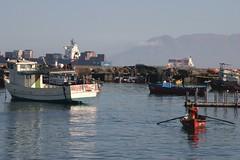 Fishing boats, Antofagasta (Andrew Mercer) Tags: chile antofagasta