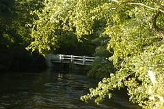 Parvin State Park (Leroy Hickman Jr--Ravendark Photography) Tags: parvin