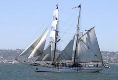 2014-08-28_15-17-29 (joannapoe) Tags: brigantine tallships losangelescalifornia paradeofsail exyjohnson sandiegomaritimemuseum sandiegofestivalofsail