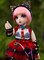 10 day challenge - 3. Newest Doll (SpicaNio) Tags: mio bjd fairyland challenge normalskin littlefee steamagecat