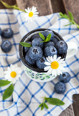Fresh blueberry (Katty-S) Tags: morning blue summer food cup wet fruit forest table dessert wooden healthy berry raw slim sweet eating rustic harvest lifestyle drop fresh blueberry health snack meal vegetarian mug organic diet weight freshness ripe nutrition dieting vitamin bilberry dietary