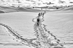 Follow the Tracks (jpmckenna - Northern Plains Tour Coming Up) Tags: winter snow snowshoe cascades snowshoeing artistspoint mtbakernationalrecreationarea