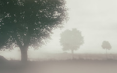 True lies... (Photography Revamp) Tags: fog landscape edinburgh foggy midlothian nikond3200 nikond7100 nikond5200 nikcollection
