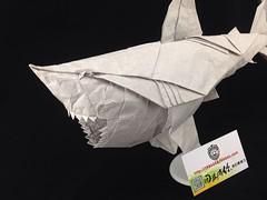 Great White Shark Nguyen Hung Cuong      Meizhou 86 fold  origami (MEI ZHOU 86) Tags: white shark origami great fold 86 meizhou hung nguyen cuong