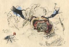 Transhumanistischer Endorphinaussto (heiko ELIAS friedrich) Tags: collage natur pflanzen elias grafik heiko friedrich zeichnung realismus wachsen organisch gegenstndlich