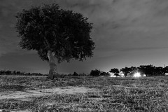 Sept 4 (rowe_rosemary) Tags: longexposure nightphotography bw beach monochrome night clouds mississippi dark stars darkness south earlymorning nightsky amateur nikond3200 bwnight mississippigulfcoast nightclouds d3200