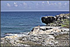 2270418492_ec7fb75312_o (gray.florie) Tags: ocean sky sun clouds mexico iguana mujeres floriegray appenninosettentrionalealpinatura