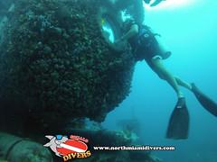 Aquarius Reef Base-Islamorada, FL-July 2014-8 (Squalo Divers) Tags: divers florida scuba diving nasa aquarius reef base fiu squalo