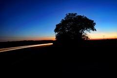 Car Laser (xommandcity) Tags: auto orange car erfurt wolken laser blau morgen baum schwarz