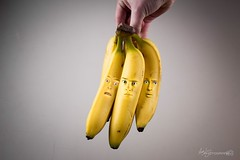 44/52 - I've Gone Bananas! (Forty-9) Tags: softbox efs1785mmf456isusm forty9 project522016 2016 yongnuospeedliteyn560iv 522016 strobist tomoskay yongnuo lightroom canon strobism studio efslens gonebananas eos60d 4452 52 bananabunch photoshop week44 banana welcometomylittleworld flash ivegonebananas project52 playonwords
