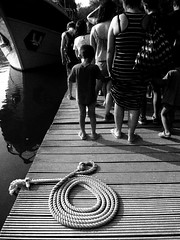 IMG_5518 (maru.hvozdecka) Tags: guca trumpet festival balkan music serbia montenegro krka dubrovnik kotor oldtown unesco gipsy tara bridge fortress church summer waterfalls