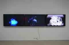 Art and Future_Engery_Climate_Cultures (Dunedin_School_of_Art) Tags: dunedinschoolofart climatechange coal sealevelrise cleanair antarctica watershortage drought earthquakes
