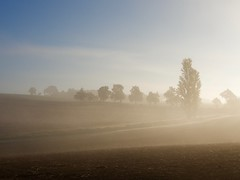 Matin d'automne (2) (@phr_photo) Tags: brume matin morning mist landscape paysage sunrise flickunitedaward soleil sun