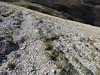 DSCN7170 (pierfrancesco.burrato) Tags: ingv vettore terremotoamatrice emergeo