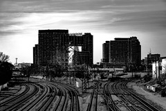 Rail Ways (A Great Capture) Tags: agreatcapture agc wwwagreatcapturecom adjm ash2276 ashleylduffus ald mobilejay jamesmitchell toronto on ontario canada canadian photographer northamerica fall autumn automne herbst 2016 torontoexplore city downtown lights urban cityscape urbanscape eos digital railscape outdoor outdoors street photography blackandwhite noiretblanc building tracks train rail railway traintracks blackwhite bw