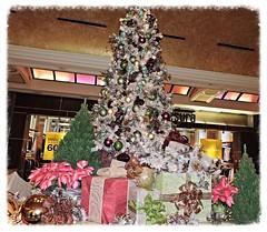 Christmas Season 2016 (marilyntunaitis) Tags: christmasseason2016 borgatahotelandcasino atlantic city atlanticcity nj