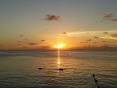 IMG_20160904_1931115_rewind (rolyrol1982) Tags: sun set sunset gulf mexico key largo florida keys horizon