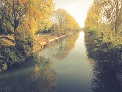 Canal de la Marne (K r y s) Tags: bordsducanal ciel canaldelamarne nature water chelles outdoor 2016 blueskye extérieur bleu blue tree arbre outdoors arbres autumn verdure extérieurs automne