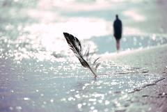 DSC_0060a (MrJsBelieve) Tags: conceptual conceptualphotography art fineart beach sea peace calm