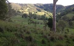 L169 Innes View Road, Comboyne NSW
