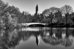 Bow Bridge _ bw (Joe Josephs: 2,861,655 views - thank you) Tags: centralpark joejosephs nyc newyorkcity copyrightjoejosephs landscapephotography outdoorphotography ny usa landscapes urbanparks cityparks travelphotography travel manhattan centralparknewyork