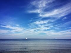 .lonely sailer. (zonenfred) Tags: instagramapp square squareformat iphoneography uploaded:by=instagram xproii strand beach binz ruegen rgen inselruegen ostsee bluesky sunnyday urlaub