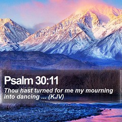 Daily Bible Verse - Psalm 30:11 (daily-bible-verse) Tags: king verse praisegod creationofgod