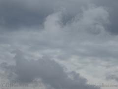 Fleur-de-lis (byGabrieleGolissa) Tags: fineartphotography kunstfotografie kunstphotographie fotokunst photokunst foto fotografie fotographie handsigned himmel photo wolken clouds handsigniert limitededition limitierteauflage numbered nummeriert skies sky fleurdelis lilie grau grey heraldry photography