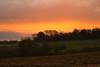 levé du jour (avant la pluie...) (vieubab) Tags: arbres atmosphère aube bois calme chemin couleurs campagne champs extérieur escapade sonyflickraward luminosité lumière levédujour nature unlimitedphotos paysage saveearth sony