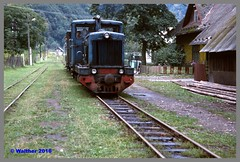 Ukraine 93_132aa (r_walther) Tags: schmalspur doppeltraktion theresiental tu4 waldbahn zakarpattia ukraine ukr