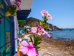 Klima (Manolis Kalyvianakis) Tags: klima milos cyclades greece visitgreec summer island vacations sea nice boat village colorfull colors blue sky